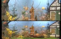 Chochliki – Chatka w kwiatki