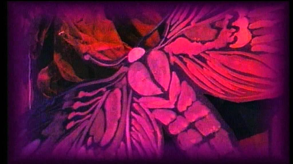 Chochliki – Złote różki