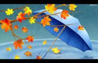 Jesienny deszcz