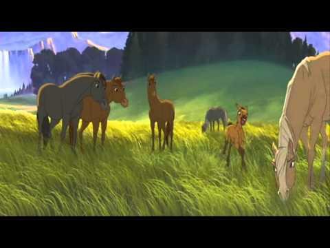 Mustang z dzikiej doliny – Oto ja