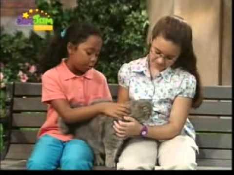 08 Barney i przyjaciele – Here Kitty Kitty
