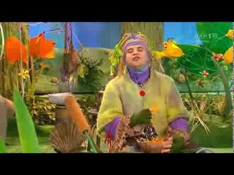 Domisie – Złe chrupaki-czipsaki