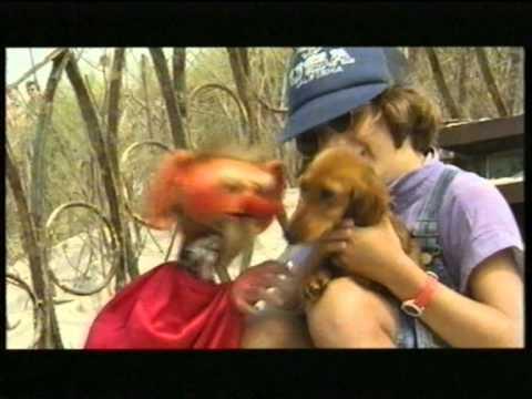 Kulfon i Monika – Kropelka złotych marzeń (Bursztynek)