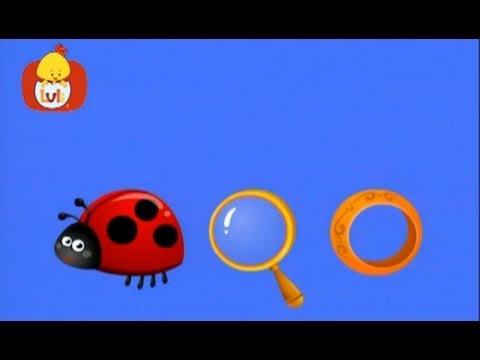 Książeczka kształtów – Kółko: punkty, lupa, pierścień, dla dzieci