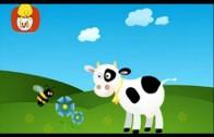 Książeczka kształtów – Kółko: nos krowy, dzwonek, dla dzieci