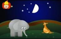 Książeczka kształtów – Elipsa: szczoteczka, dla dzieci
