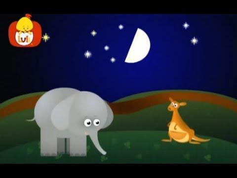 Książeczka kształtów : Półkole: kieszonka kangura, dla dzieci
