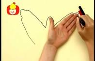Koleżki na dłoni – Nietoperz i bokser, dla dzieci