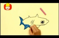 Koleżki na dłoni – Chrząszcz i rekin, dla dzieci