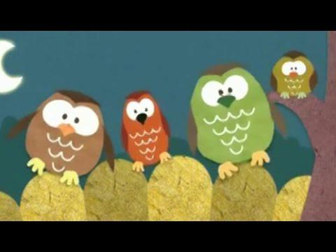 Dobranoc – Ptaki: sowy, dla dzieci