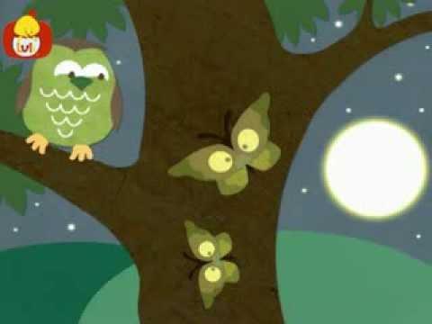 Dobranoc – Owady: motyle, dla dzieci