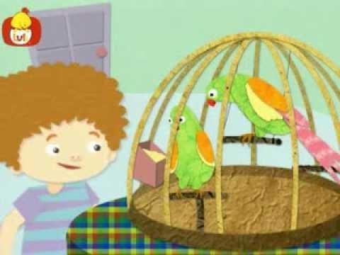 Dobranoc – Zwierzęta: papuga, dla dzieci