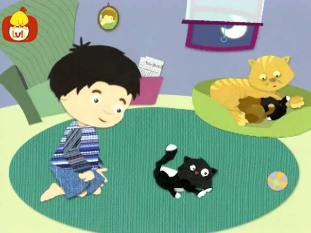 Dobranoc – Zwierzęta: kocięta, dla dzieci