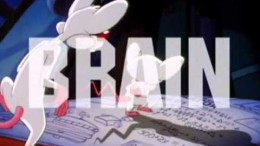 Piosenka z Bajki – Pinki i Mózg