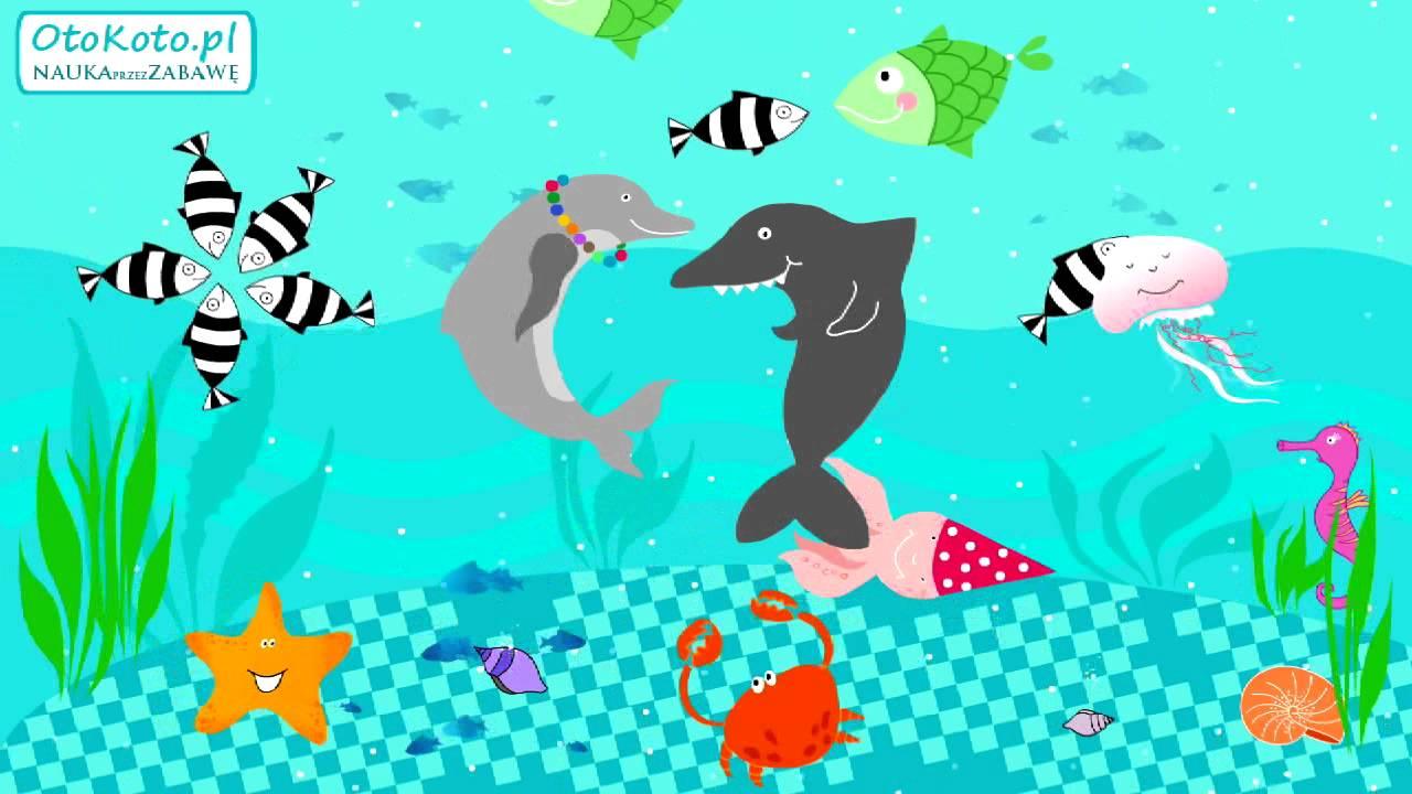 Morskie Party – piosenka dla dzieci