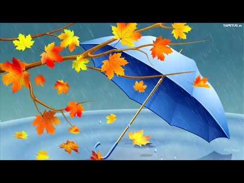 Jesienny deszcz – Polska Piosenka Dla Dzieci