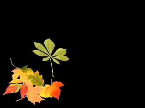 Poszła Ola na spacerek Na słoneczko, na wiaterek – Piosenka o Jesieni