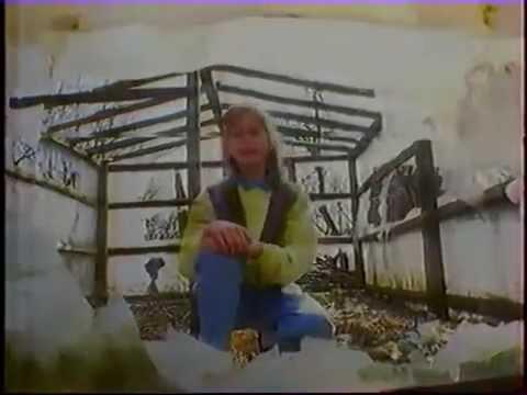Podwórko Pod Chmurką – Zespół Dziecięcy Fasolki