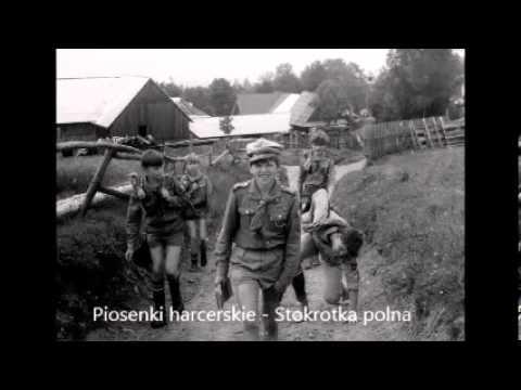 Stokrotka polna – Tekst – Piosenki harcerskie